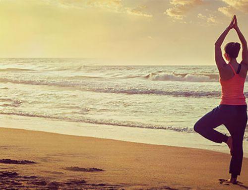 """Tikhomiroff (Natha Yoga) en réponse avec """"entretien avec un natha yogi"""""""