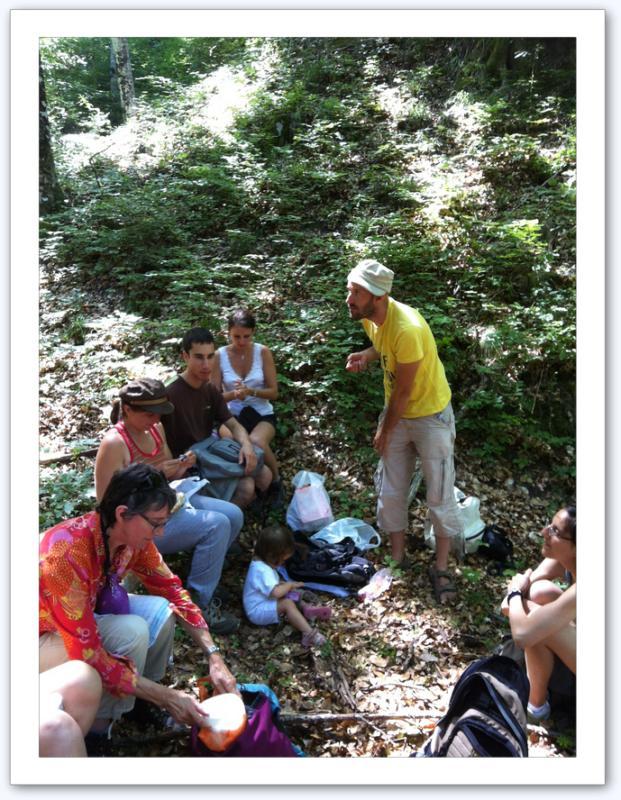 Pique nique en forêt de Saou